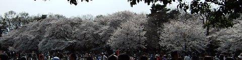 2008-03-29-08.JPG