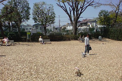 2008-04-06-03.JPG
