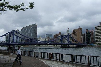 2008-05-04-07.JPG
