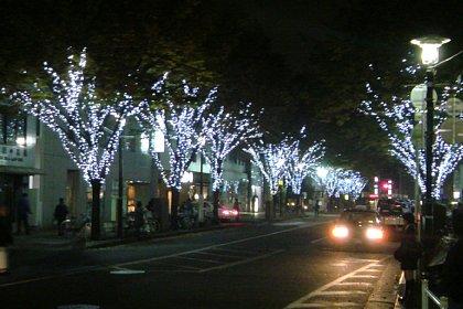 2008-11-15-04.JPG