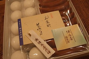 2009-01-18-004.JPG