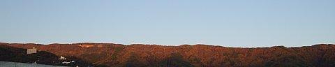 2009-11-03-02.JPG