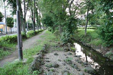 2010-07-16-01.JPG