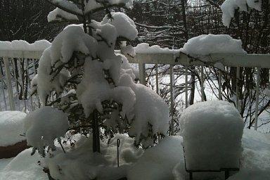 2011-02-12-01.jpg