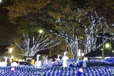 2012-11-24-01.JPG