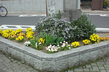 2008-03-29-02.JPG