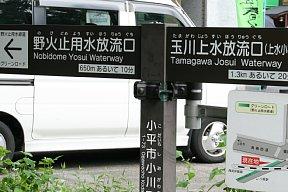 2010-07-11-07.JPG