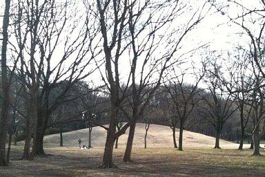 2011-01-23-04.jpg