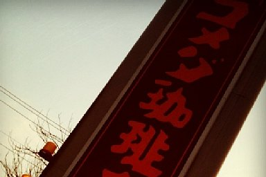2011-01-29-01.jpg