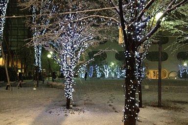 2012-01-23-01.JPG
