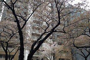 2012-04-14-02.JPG